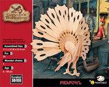 Gepetto's Peafowl_
