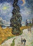 Landweg in de Provence bij nacht :: Vincent van Gogh
