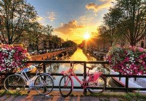World's Smallest - Amsterdam