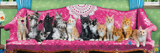 Eurographics 1000 Panorama - Kitty Cat Couch