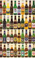Piatnik 1000 - Beer