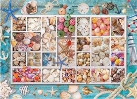 Eurographics 1000 - Seashell Collection
