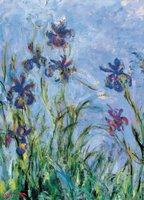 Eurographics 1000 - Monet: Irises