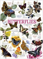 Cobble Hill 1000 - Butterfly Collection