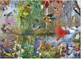 Cobble Hill 1000 - Birds of the Season