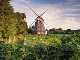 Ravensburger 1500 - Windmolen aan de Oostzee
