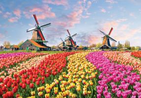 World's Smallest - Dutch Windmills