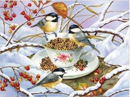 Cobble Hill 275 (XXL) - Chickadee Tea