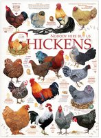 Cobble Hill 1000 - Chicken Quotes