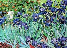 Eurographics 1000 - Vincent van Gogh: Irisis