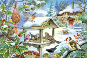 House of Puzzles 250 (XL) - Feed the Birds
