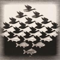 M.C. Escher - Lucht en Water