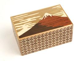 Japans Puzzelkistje Fuji and Tsubaki