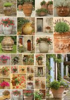 Piatnik 1000 - Flowerpots