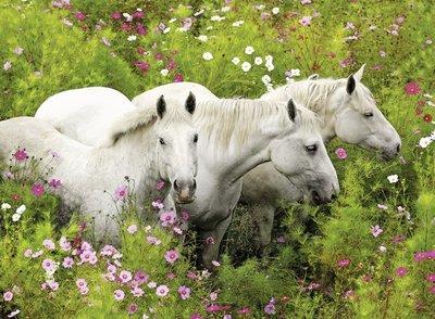 Paarden tussen bloemen :: Ravensburger