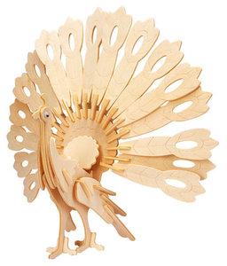 Gepetto's Peafowl