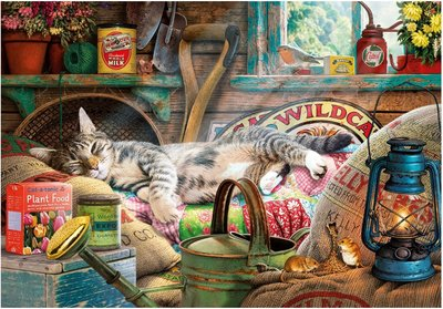 Snoozing in the Shed :: Gibsons