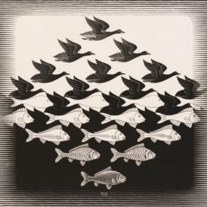 Lucht en Water :: M.C. Escher