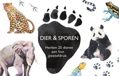Dier & Sporen :: Natuur